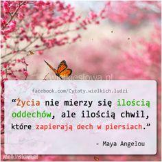 Życia nie mierzy się ilością oddechów... #Angelou-Maya,  #Życie