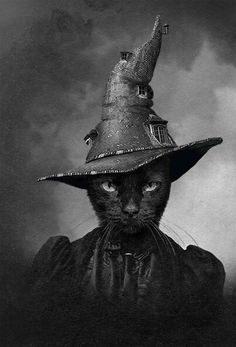 Black Cat Witch - The Cat in the Magical Hat. Fröhliches Halloween, Vintage Halloween, Vintage Witch, Halloween Black Cat, Crazy Cat Lady, Crazy Cats, Witch Cat, Cat Love, Cat Art