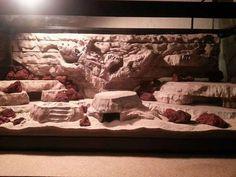 aquarium background vivarium custom background by Herphomes - Animals and pets Lizard Habitat, Reptile Habitat, Reptile Room, Reptile Cage, Reptile Enclosure, Reptile Tanks, Vivarium, Bartagamen Terrarium, Terrarium Reptile