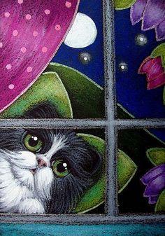 TUXEDO FAIRY CAT BY MY WINDOW