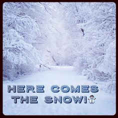 Here Comes The Snow!☃️ Stay Safe Everyone! #snow #snowstorm #bombcyclone #blizzard #winter #cold #winterwonderland #newengland #eastcoast #newyork #dangerous #besafe #outdoors #travel #slippery #ice #season #heater #snowboarding #snowflakes #snowday #wet #staysafe #becareful #noschool #music #news #dayoff #photography #staywarm