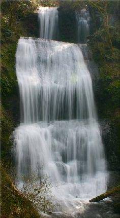 Royal Terrace Falls 119'- Linn Co McDowell Creek Falls Co Park near Lebanon, OR