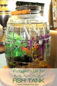 fish tank/aquarium on Pinterest   Fish Tanks, Aquarium and Fish ...