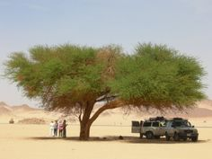 Djanet, Algeria: here starts the 4WD exploration of the Admer-Tadrart desert, where the Sahara shows his best part