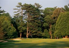 The Briars Golf Course