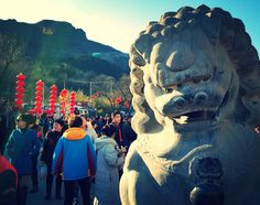A stone lion statue outside the entrance of a temple mountain in #Beijing during the #Chinese New Year the year of the monkey.