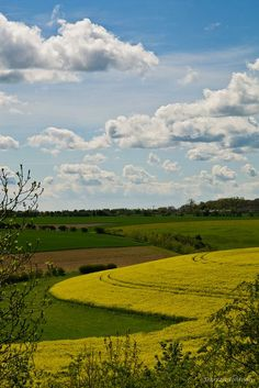 The Cotswolds between Burford & Charlebury, England