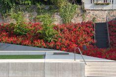 06_Marburg-Ehemalige-Synagoge_Garten-des-Gedenkens-Nutzel « Landscape Architecture Works | Landezine