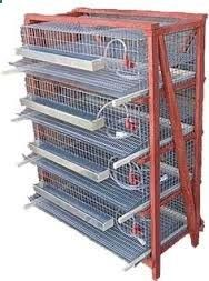 Quail Pen, Quail Coop, Chicken Water Feeder, Chicken Cages, Backyard Birds, Chickens Backyard, Types Of Pet Birds, Diy Bird Cage, Poultry Cage