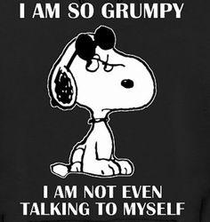 Funny Jokes To Make You LOL 👈🏻🍺😎😁👍 Hilarious Jokes & Humor - Clean Jokes, Dirty Jokes, Dad jokes & more. Peanuts Quotes, Snoopy Quotes, 9gag Funny, Phrase Cute, Beau Message, Funny Quotes, Funny Memes, Happy Quotes, Hilarious Jokes