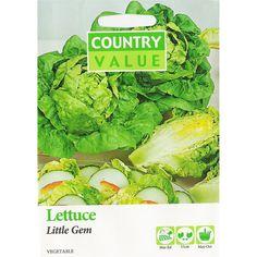 Country Value Little Gem Lettuce Seeds | Bunnings Warehouse