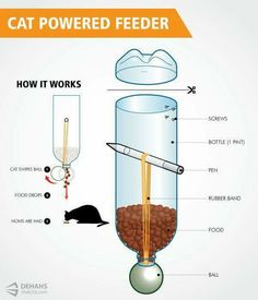 Cat-Powered Feeder