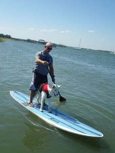 On the Water with Man's Best Friend: Charleston Outdoors