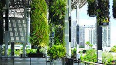 Perez Art Museum Miami Hanging Gardens #takuyaduncan #artbasel #art #style #beach #wanderlust #artmiami #artlover #artcollector #culture #luxury #travel #places #museum #pop #contemporary