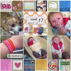 Digital Project Life - Week 17 by Sarah Good