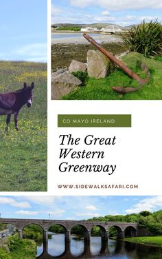 Learn about fun things do in County Mayo Ireland. Rent bicycles and ride the Great Western Greenway. #Mayo #Ireland Westport Ireland, County Mayo Ireland, Great Western, Ireland Travel, Travel Around, Bicycles, Great Places, Fun Things, Westerns