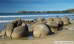 Septárie Moeraki Boulders na Novém Zélandu Většina badatelů se domnívá, že pocházejí z jílovcových skal podél pobřeží, jsou pozůstatkem jejich eroze. Byly zformovány na dně oceánu přibližně před 60 miliony lety postupným nabalováním kalciových solí kolem pevného jádra, fungujícího jako cement. Maorská legenda ovšem praví, že Moeraki Boulders byly původně koše na jídlo převážené na kánoi Araiteuru. Kánoe ztroskotala u pobřeží Nového Zélandu a koše se proměnily právě v hladké balvany.