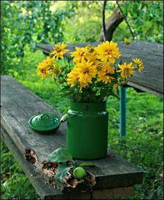 tejeskanna váza