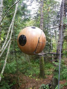 Free Spirit Spheres, located on Canada's Vancouver Island, offers overnight guests a unique way to experience nature.