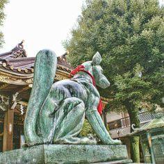 Inari le dieu renard.