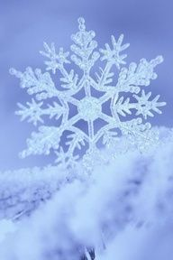 snowflake--the most beautiful thing ever.