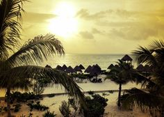 Playa Mujeres, Mexico  http://www.excellence-resorts.com/caribbean-and-mexico-destinations/excellence-playa-mujeres