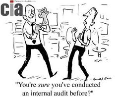 Image result for audit funny pictures