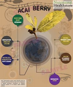 Learn a few benefits of the amazing #acaiberry: http://www.honeycolony.com/article/acai-berry-benefits/ Please Retweet! #antioxidants #honeycolony