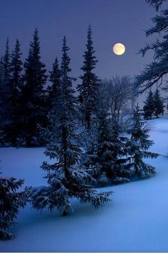 17 Trendy Photography Winter Night Beautiful Moon The Effective Pictures We Offer You A Winter Moon, Winter Night, Snow Night, I Love Winter, Winter Images, Winter Photos, Moon Photography, Winter Photography, Art Blanc