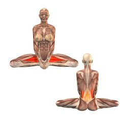Упражнение «Бабочка» сохранит женское здоровье