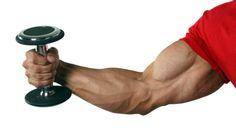 5 Easy Ways to Start Building Bigger Biceps