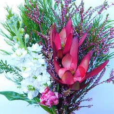 TODAY'S BUNCH New Kids, Melbourne, Colours, Instagram Posts, Flowers, Plants, Flora, Royal Icing Flowers, Floral