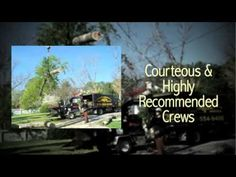 Tree Removal Loganville | North American Tree Service   Call (770) 554-9406  https://www.youtube.com/watch?v=uxc7AIvKqPI
