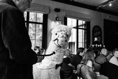 Larmertree wedding photographer - a beautiful spring wedding at Larmertree gardens Spring Wedding, Garden Wedding, Order Of The Day, Reception, Gardens, Beautiful, Tuin, Garden
