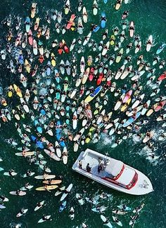surfers and a boat....This looks like out of a zombie surfing movie.. they are going after the boat lol