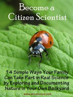 Citizen Science: 14 Ways Your Family Can Explore and Document Wildlife in Your Own Backyard ~ Eco-novice