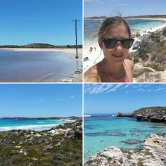 Magical #rottnestisland  #WA #beautifulnature #nofilter #amazingcolours #bright #blue #beaches #sand #relax #enjoy #Ilovemylive #wanderlust #discover #experience #australia by juligoessydney http://ift.tt/1L5GqLp
