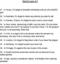 Funny Laws, In Laws Humor, You Funny, Haha Funny, Really Funny, Funny Stuff, Odd Facts, Wtf Fun Facts, Random Facts