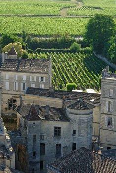 Vignoble de Saint-Emilion. Bordeaux.
