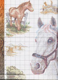 Gallery.ru / Фото #4 - сны о лошадях - irisha-ira