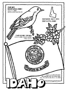 Georgia State Symbol Coloring Page by Crayola. Print or color ...