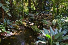 Fairchild Tropical Botanic Garden in Coral Gables, FL