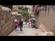 MOUNT of OLIVES JERUSALEM PILGRIMAGE VIDEO TOUR - YouTube Mount Of Olives, Catholic Religion, 54 Kg, Pilgrimage, Day Tours, Spirituality, Street View, Journey, Travel