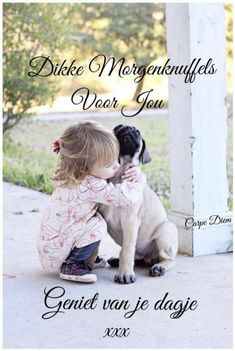 Love Hug, Good Morning Good Night, Morning Quotes, Labrador Retriever, Hugs, Words, Funny, Pictures, Animals