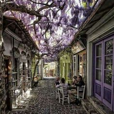 Sipping coffee with friends in Santorini, Grecia Wisteria! Places Around The World, Oh The Places You'll Go, Places To Visit, Around The Worlds, Small Places, Okinawa, Greek Islands, Belle Photo, Dream Vacations