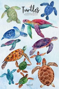 Sea Creatures Drawing, Creature Drawings, Animal Drawings, Cute Turtle Drawings, Sea Turtle Art, Sea Turtle Painting, Sea Turtle Nursery, Illustration Inspiration, Watercolor Sea