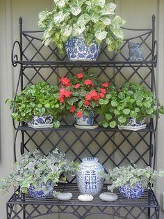 Plenty green pots