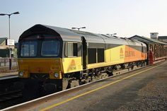 Class 66  COLAS RAIL Electric Locomotive, Diesel Locomotive, British Rail, Sheds, Track, Modern, Display Stands, Trains, Locomotive
