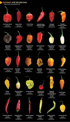 Die Hot-Chili-Welt Funchal News - # - Recetas Mexicanas Postres Hot Sauce Recipes, Shake Recipes, Hot Pepper Recipes, Types Of Peppers, Cooking Tips, Cooking Recipes, Coconut Oil Weight Loss, Food Charts, Stuffed Hot Peppers