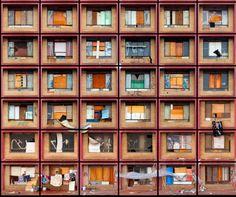 Continue, Photography, Inspiration, Surface, Home Decor, Sao Paulo, Fish, Poem, Fotografia
